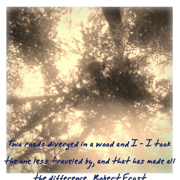 Robert Frost Quote. The Road Less Traveled . . .