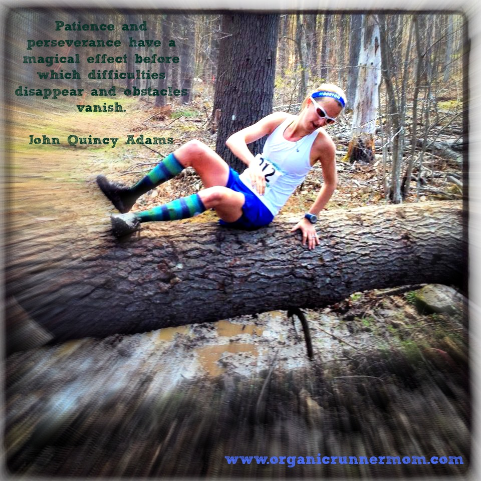 Don't fear the obstacles in your life . . . Muddy Moose Trail Run 14 Miler