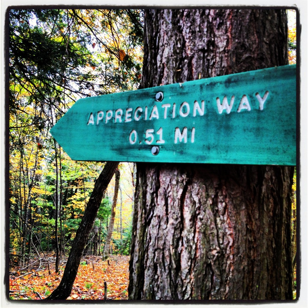 Appreciation Way–try a new trail this fall!