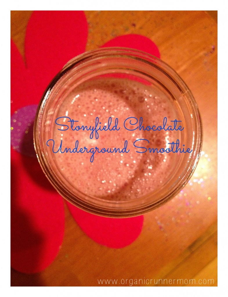 Stonyfield Chocolate Underground Smoothie