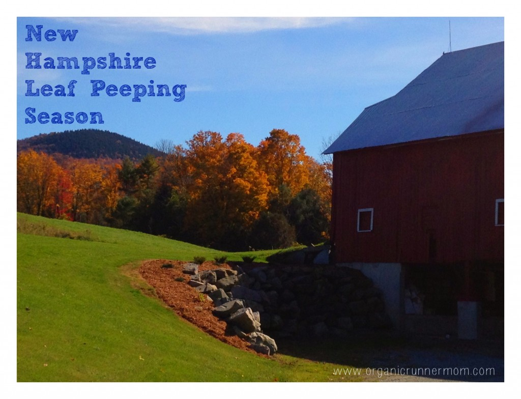 The government shutdown can't stop the leaf peepers!