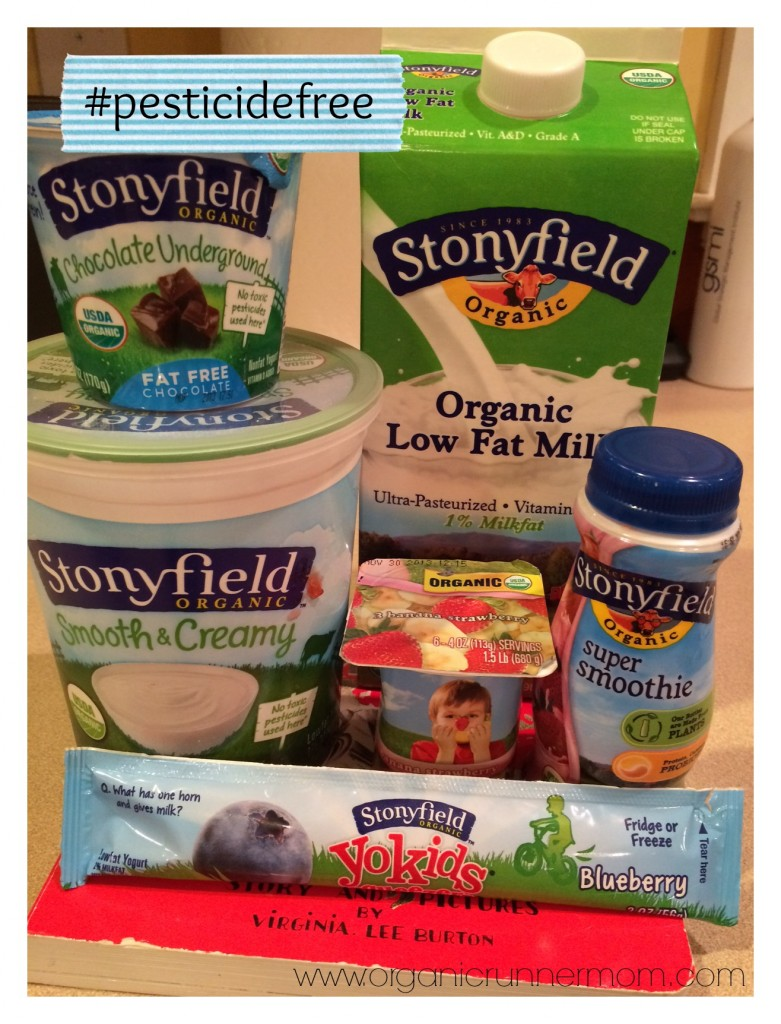 Here is a sample of the Stonyfield products that usually fill our refrigerator. Yum!