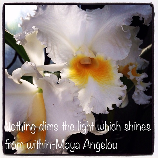 Nothing dims the light which shines from within-Maya Angelou