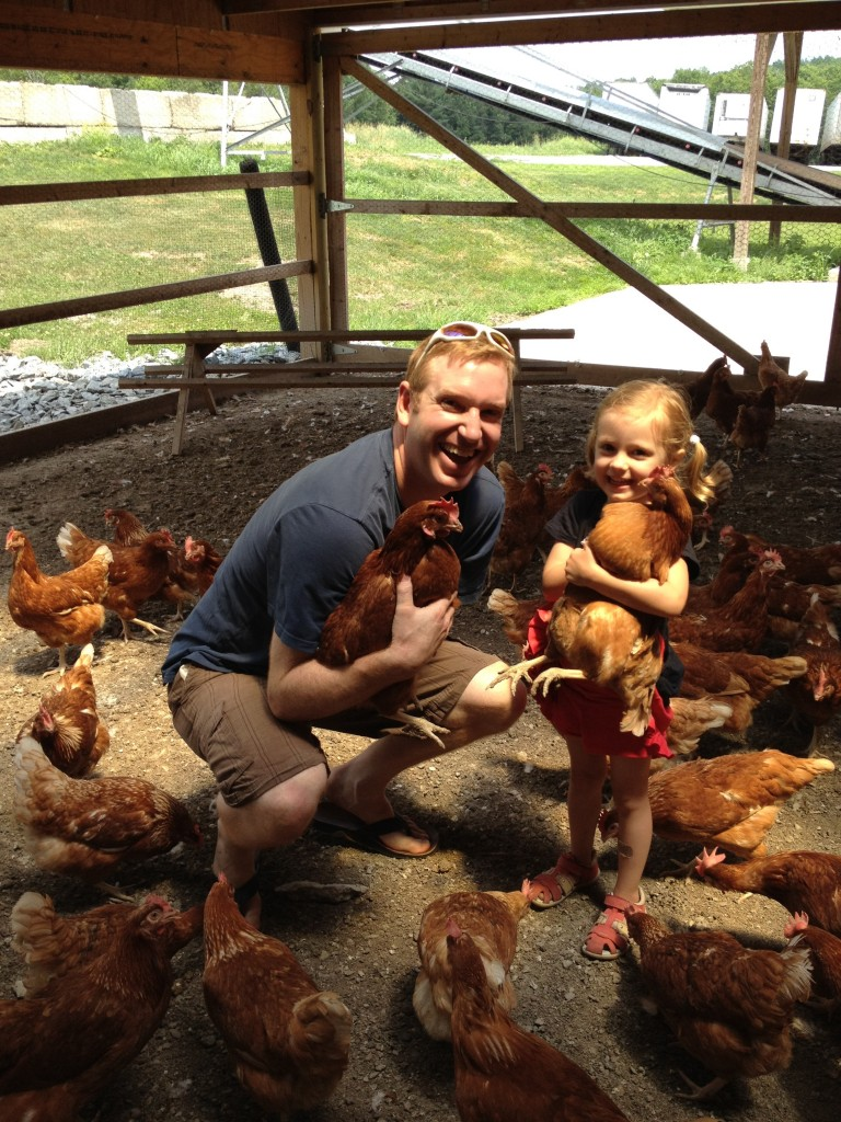 Chickens and a Dream