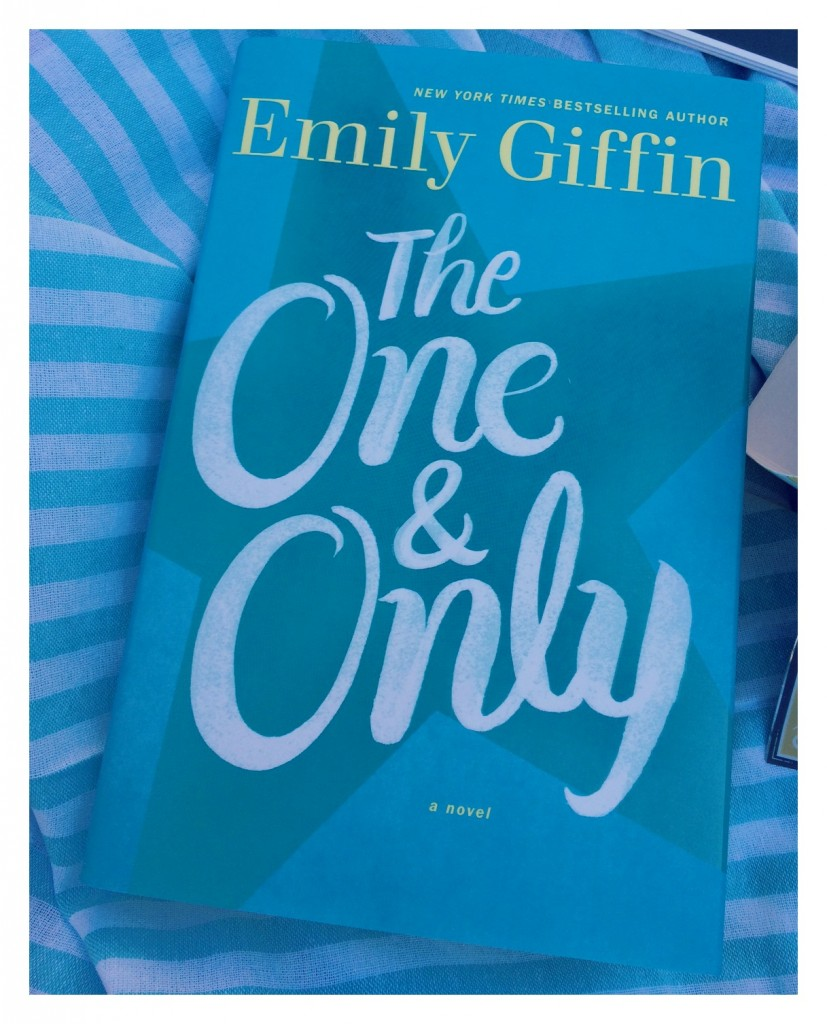 Emily Griffin's The One and Only $28
