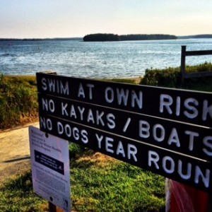 Swim at your own risk at the Lobsterman Triathlon