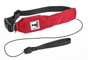 Rad Dog Release N' Run Leash. Organic Runner Mom