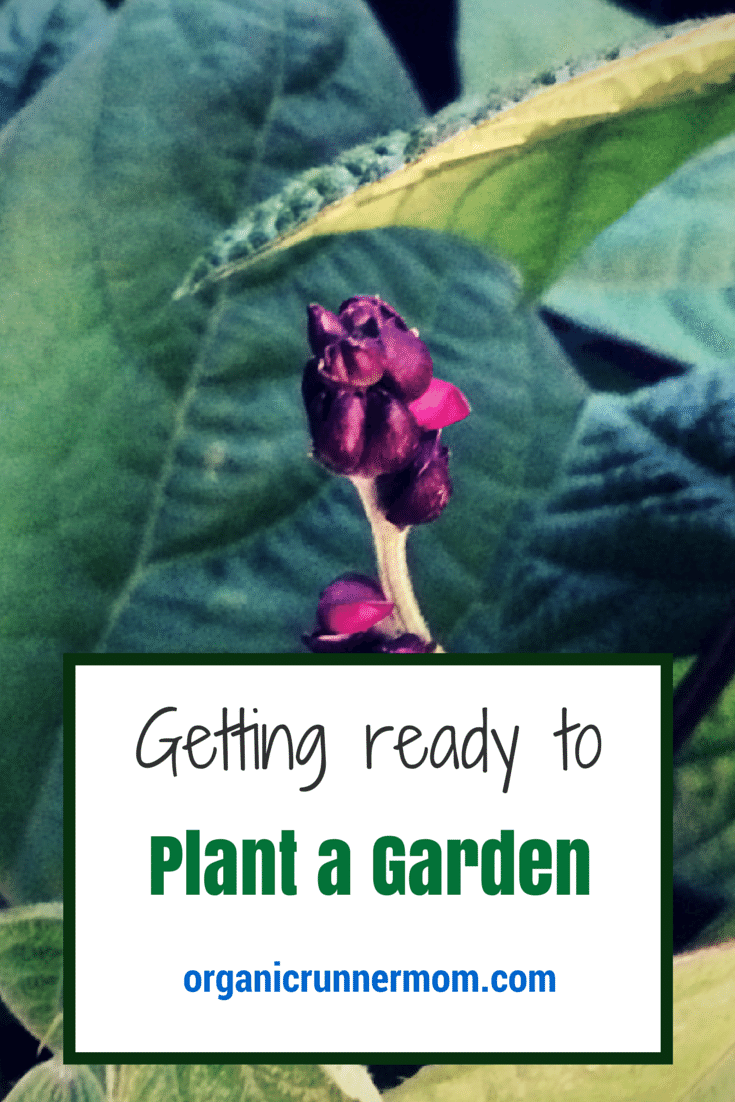 Getting Ready to Plant a Garden. Tips for Planting a Garden | Organic Runner Mom