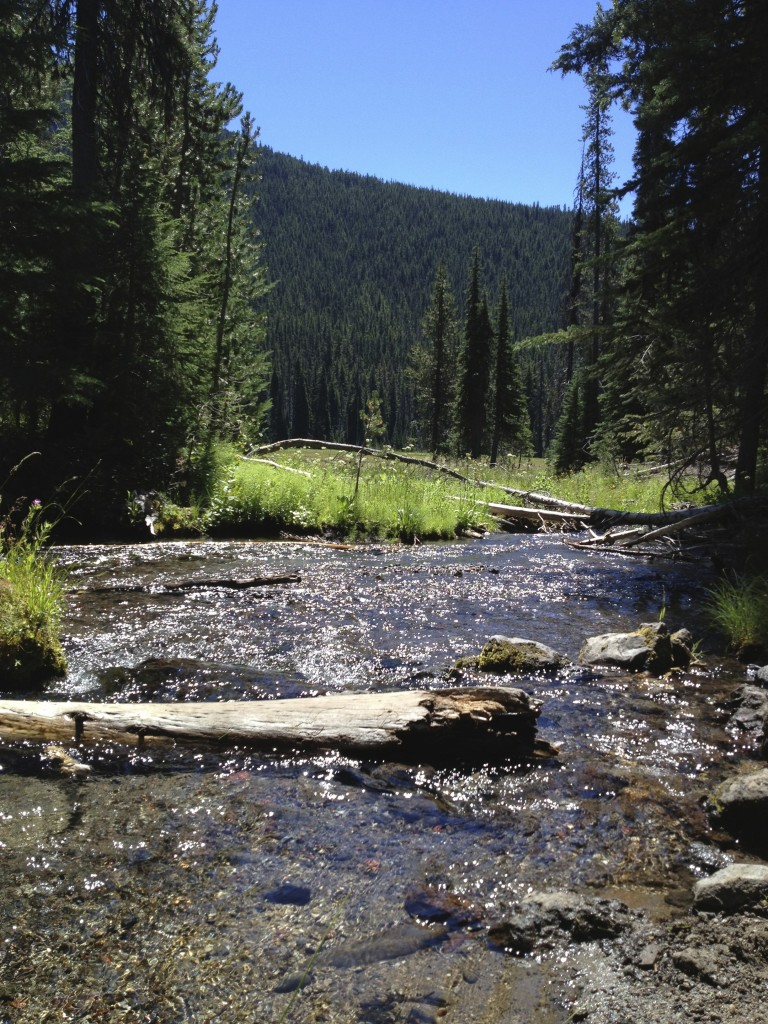 Soda Creek Trail, Bend, Oregon