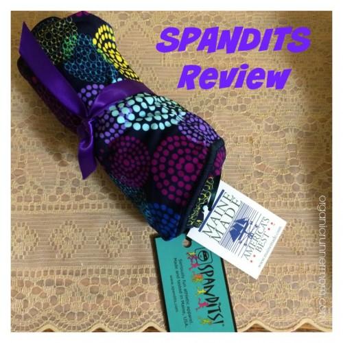 Spandits Review