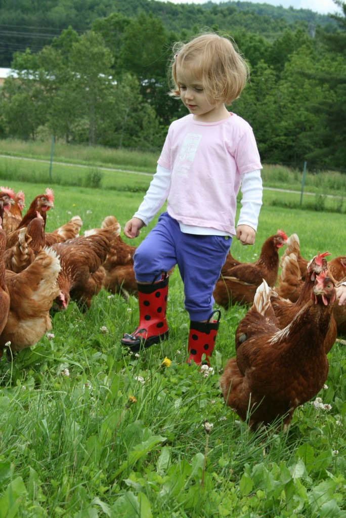 My daughter on our own organic egg farm.