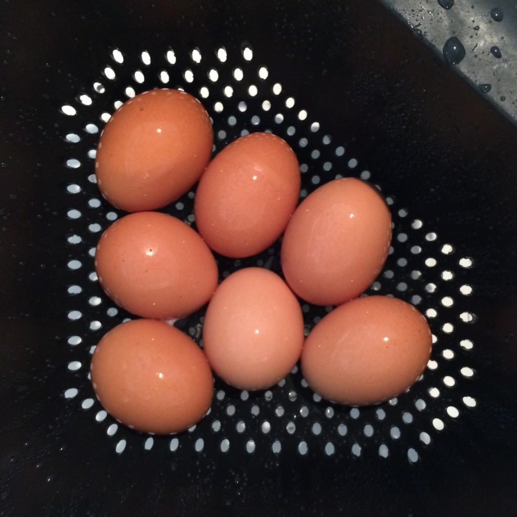 Hard-Boiled Pete and Gerry's Organic Eggs