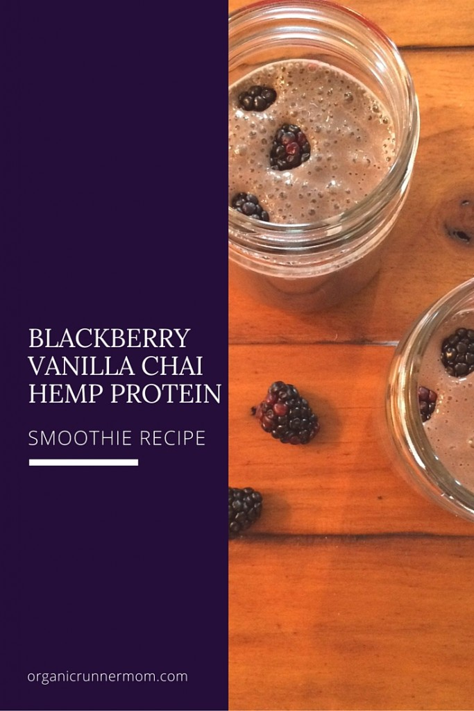 Blackberry Vanilla Chai Hemp Protein Smoorhie