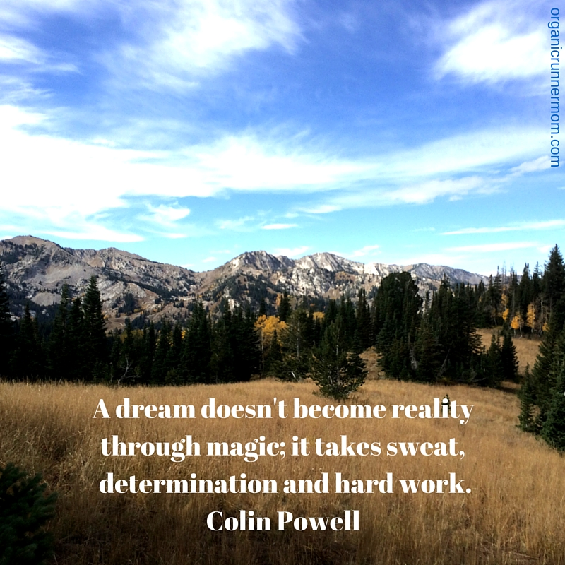 A dream doesn't become reality through magic; it takes sweat, determination and hard work. Colin Powell