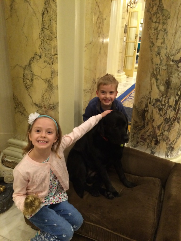 The kids were in love with the famous (now retired) lab, Catie Copley, the Copley Plaza Hotel Black Lab
