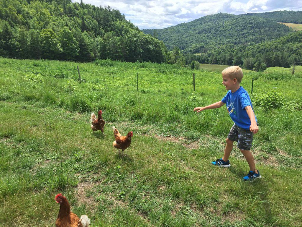 Master chicken wrangler!
