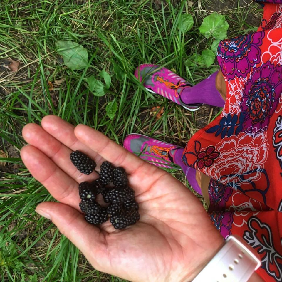 Wild Blackberries on the run? Yes, please!