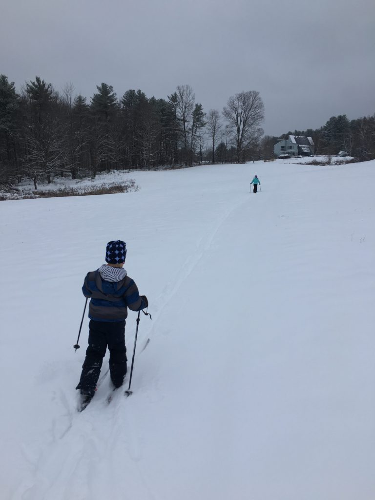 Cross Country Skiing on a Snow Day