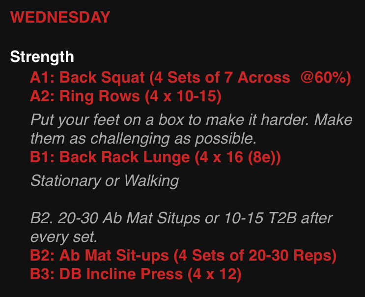 Back Squats, Ring Rows, and Lunges Oh my!