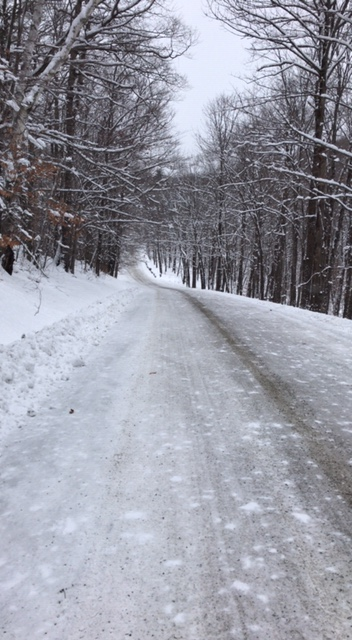 Such a beautiful wintry dirt road!