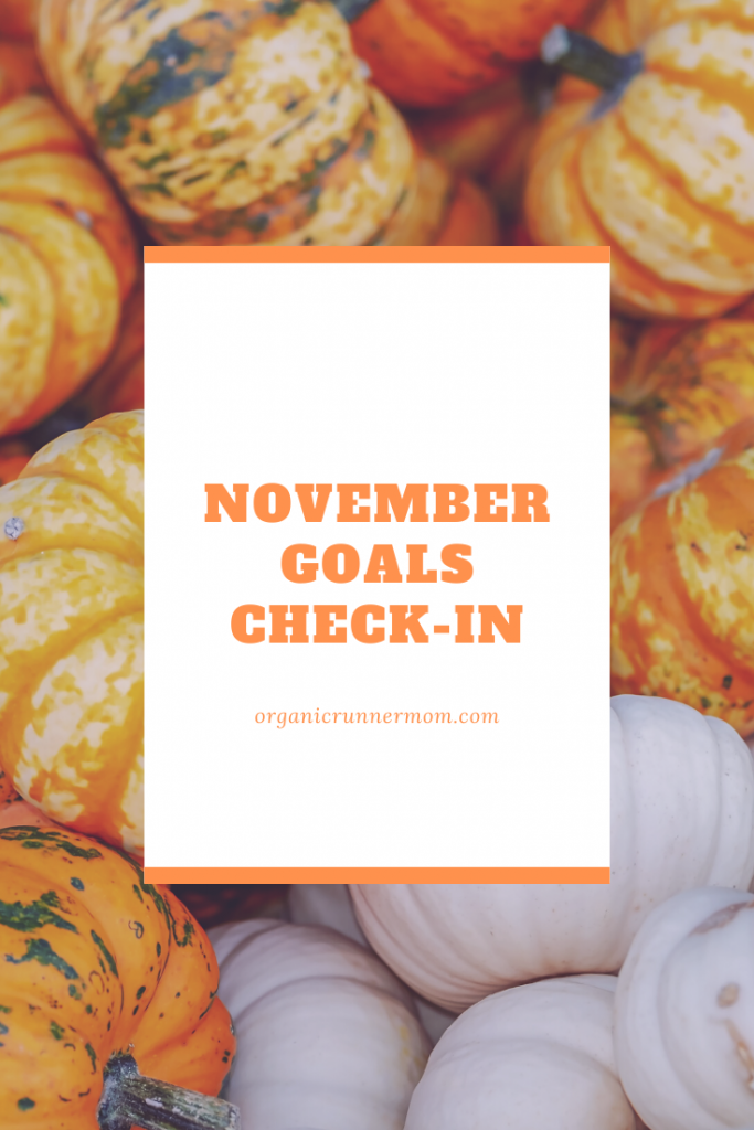 November Goals Check-in